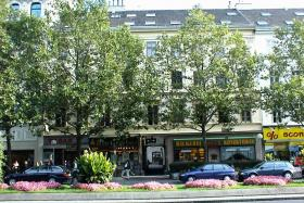 Begrünte Praterstraße